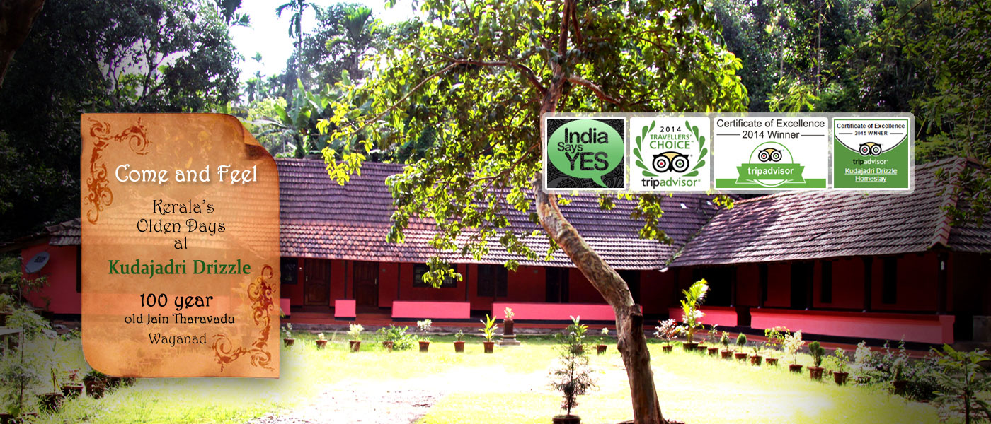 Wayanad Homestays