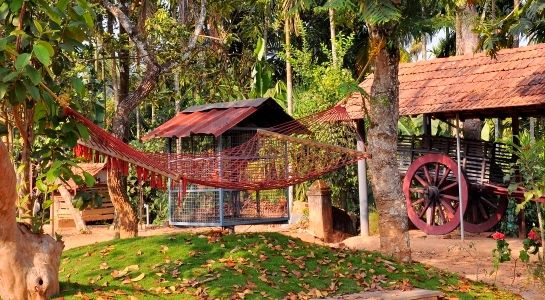 Kudajadri Homestays in Wayanad Video Tour