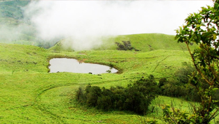Wayanad Tourism Attractions